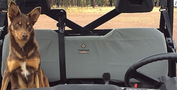Canvas Seat Cover to suit Ranger XP900 - P799Q1